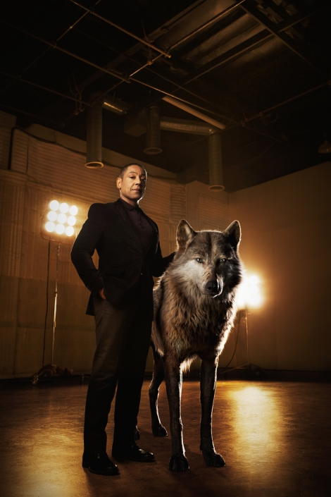 """THE JUNGLE BOOK - Akela is the strong and hardened alpha-male wolf who shoulders the responsibility of his pack. He welcomes Mowgli to the family, but worries he may one day compromise their safety. """"Akela is a fierce patriarch of the wolf pack,"""" says Giancarlo Esposito, who voices the character. """"He believes the strength of the pack lies in what each and every wolf offers. He's a great leader, a wise teacher."""" Photo by: Sarah Dunn. ©2016 Disney Enterprises, Inc. All Rights Reserved."""