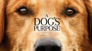 a-dogs-purpose-1